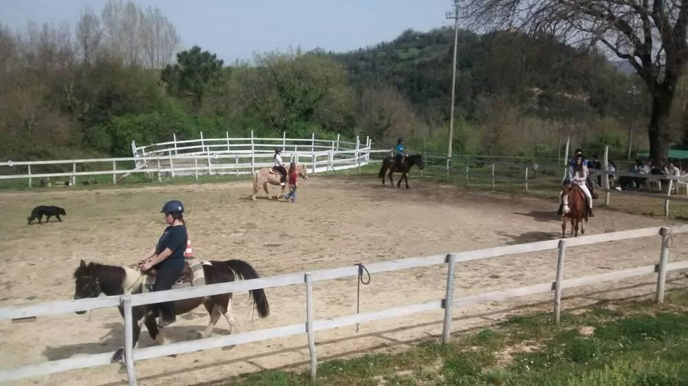 Giochi con cavalli per bambini trendy leggendo questo for Disegni cortile anteriore per semplice casa ranch