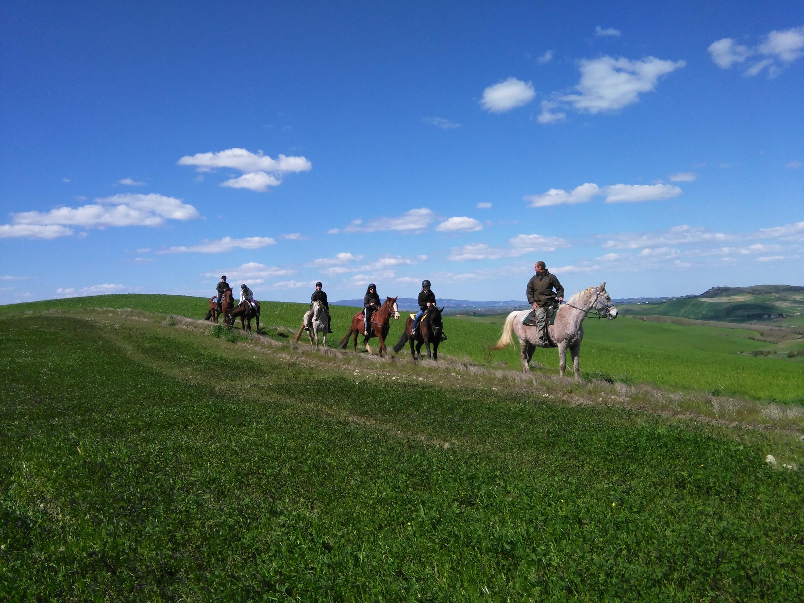 escursioni a cavallo volterra